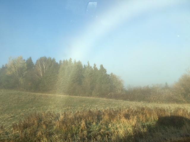 D264 Mist Archway #1